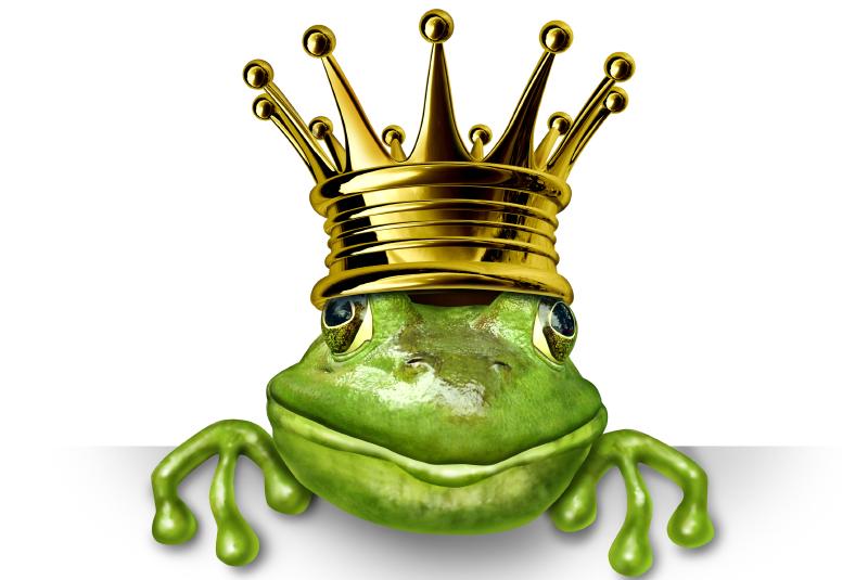 Männer verstehen - Der Froschkönig. Aber wo ist der Richtige?
