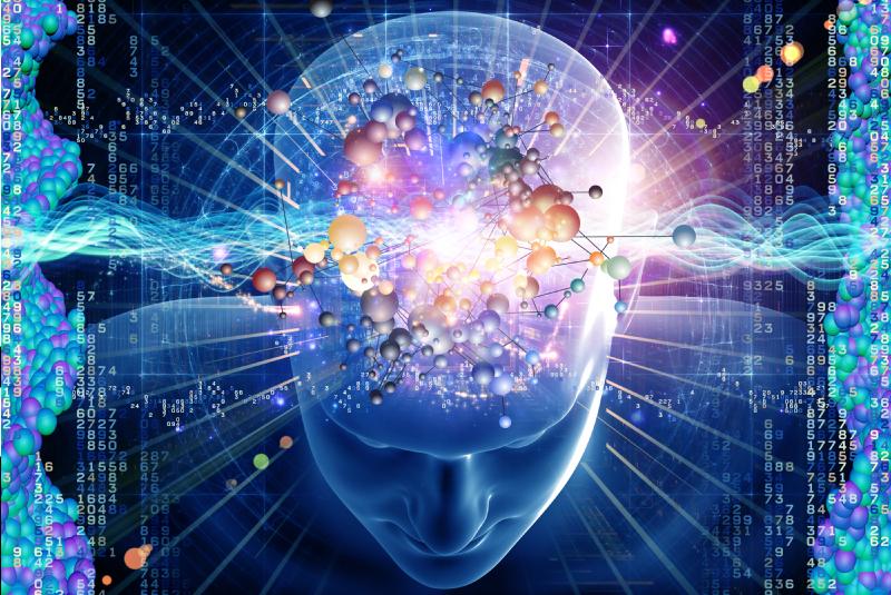 Das Gehirn auf Erfolg programmieren: The Positive Brain Advantage