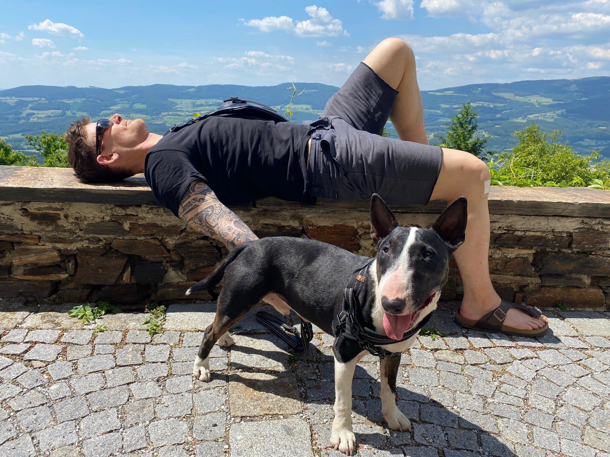 Soziale Anziehung & Erfolg - Was du von einem Hund lernen kannst
